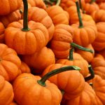 Pumpkin A Super Healthy Fall Food